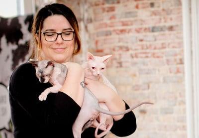 soins des yeux chats, ophtalmo vétérinaire, santé oculaire