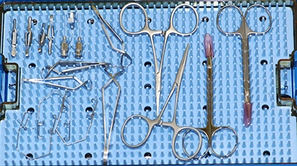 Microsurgical instruments, Ophthalmic surgery, ocular, cataract, conjunctival graft, eyelids, enucleation, dog, cat