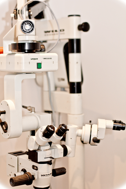 Microsurgical microscope, magnification, eye surgery, eye, dog, cat, cataract, conjunctive graft, luxation, cornea, glaucoma
